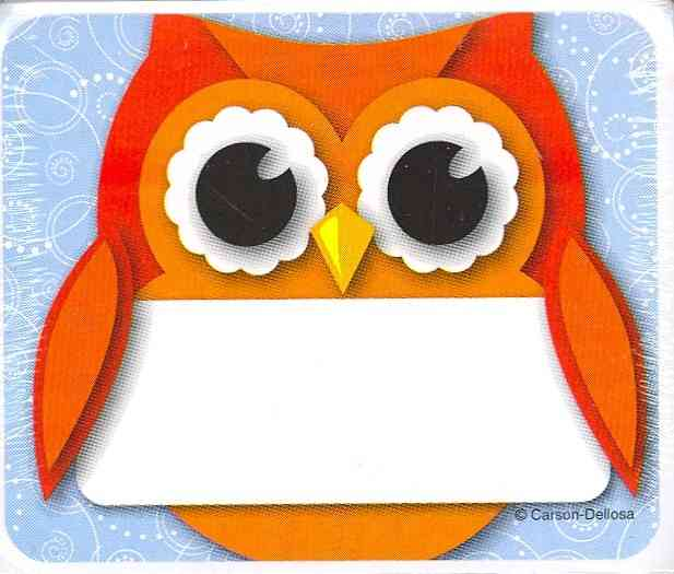 Colorful Owl Name Tags By Carson-Dellosa Publishing Company, Inc. (COR)